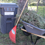 Yardwaste collection begins in March