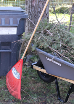 yard waste bin and wheelbarrow with branches